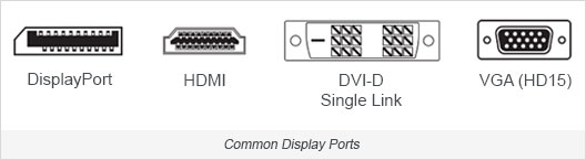 Common video input ports on monitors and HDTV.